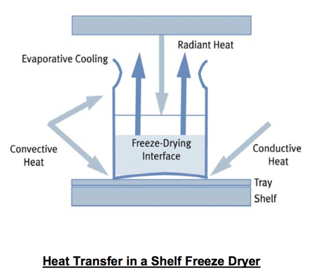 Freeze Drying Lyophilization Information Basic Principles
